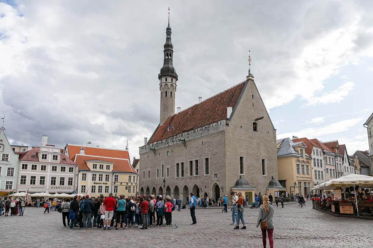 Eine der wichtigsten Tallinn Sehenswürdigkeiten: das gotische Rathaus