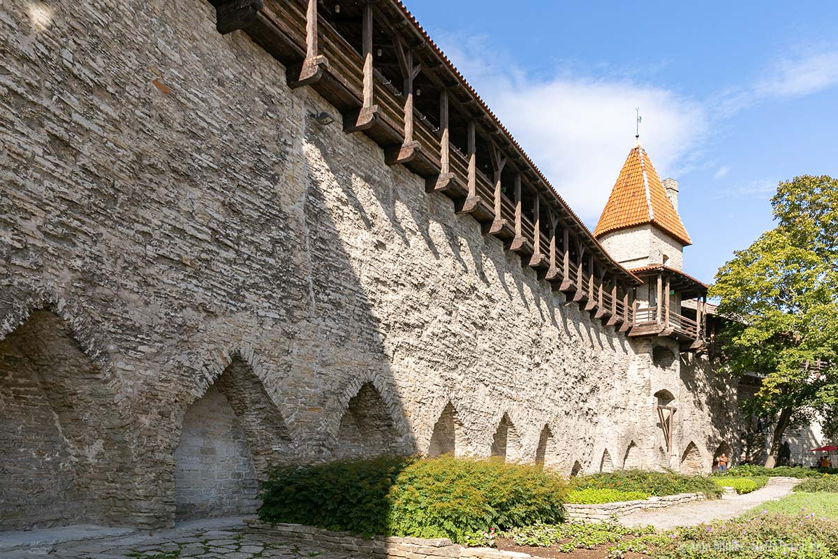 Teil der Stadtmauer am Jungfernturm