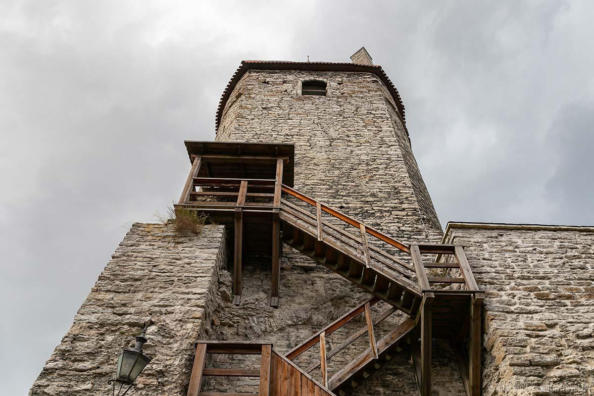 Der Plate Turm an der Stadtmauer