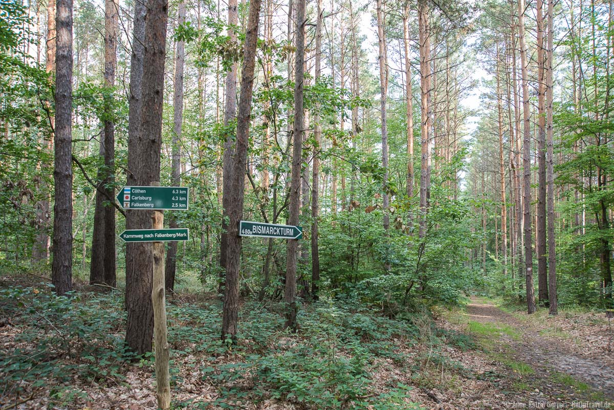 Turmwanderweg zum Bismarckturm