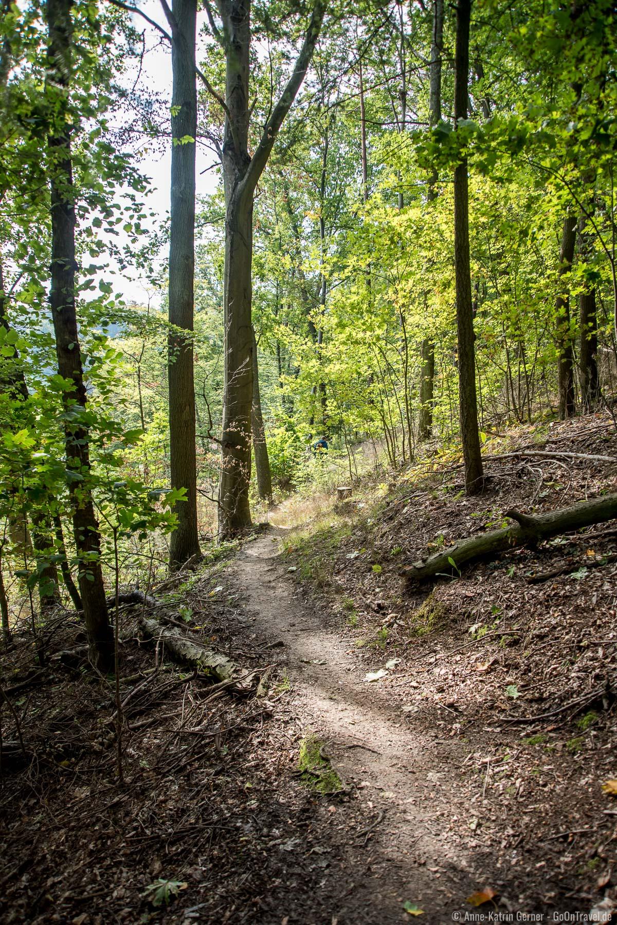 Wanderweg zwischen Eulenturm und Schanzenturm