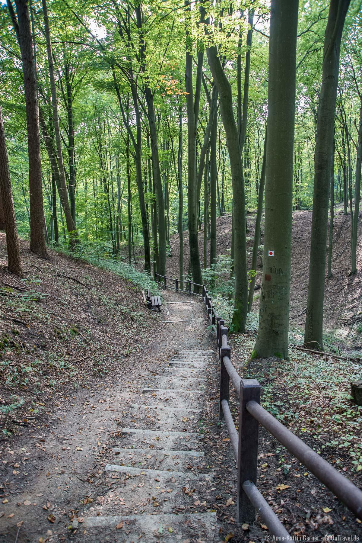 Wanderweg zwischen Schanzenturm und Aussichtsturm