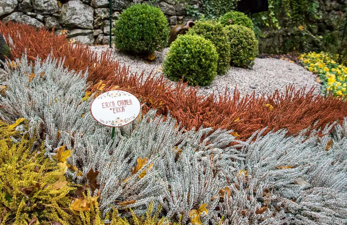 Auch im Herbst sehenswert: der botanische Garten