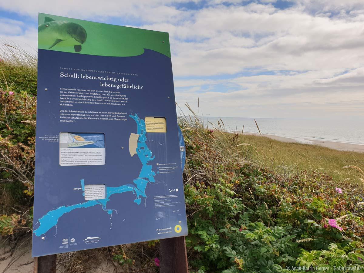 Eine von 22 interaktiven Infotafeln des Walpfads am Strandübergang Rantum.