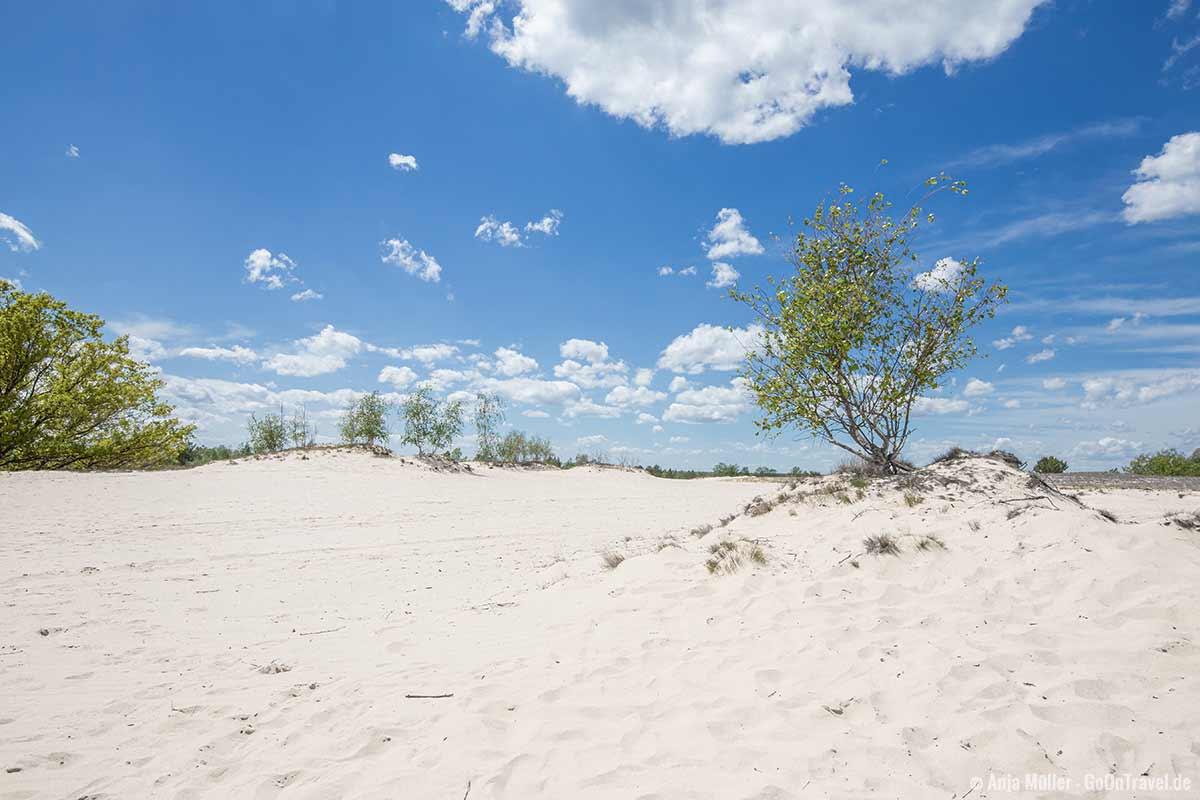 Weißer Sandstrand mitten in Brandenburg