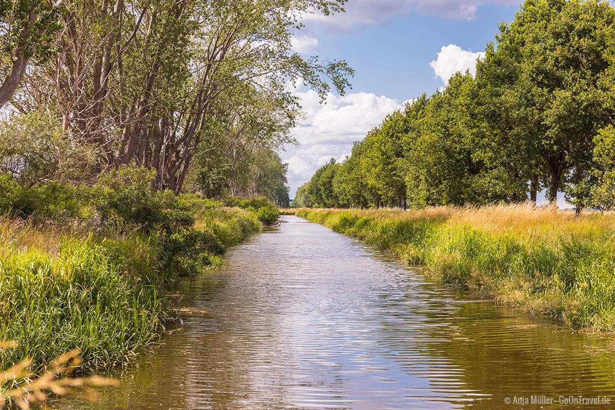 Wassergraben im Naturpark Westhavelland