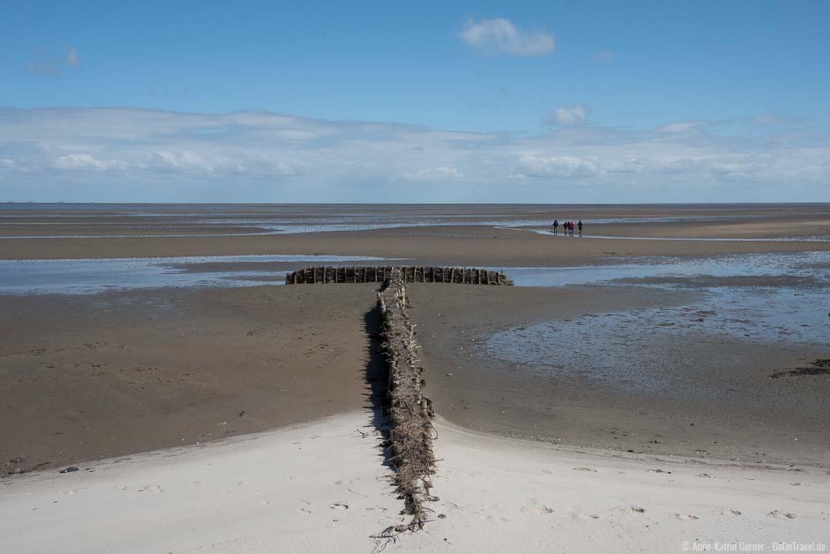 Wattwanderer vor der Vogelkoje in Kampen