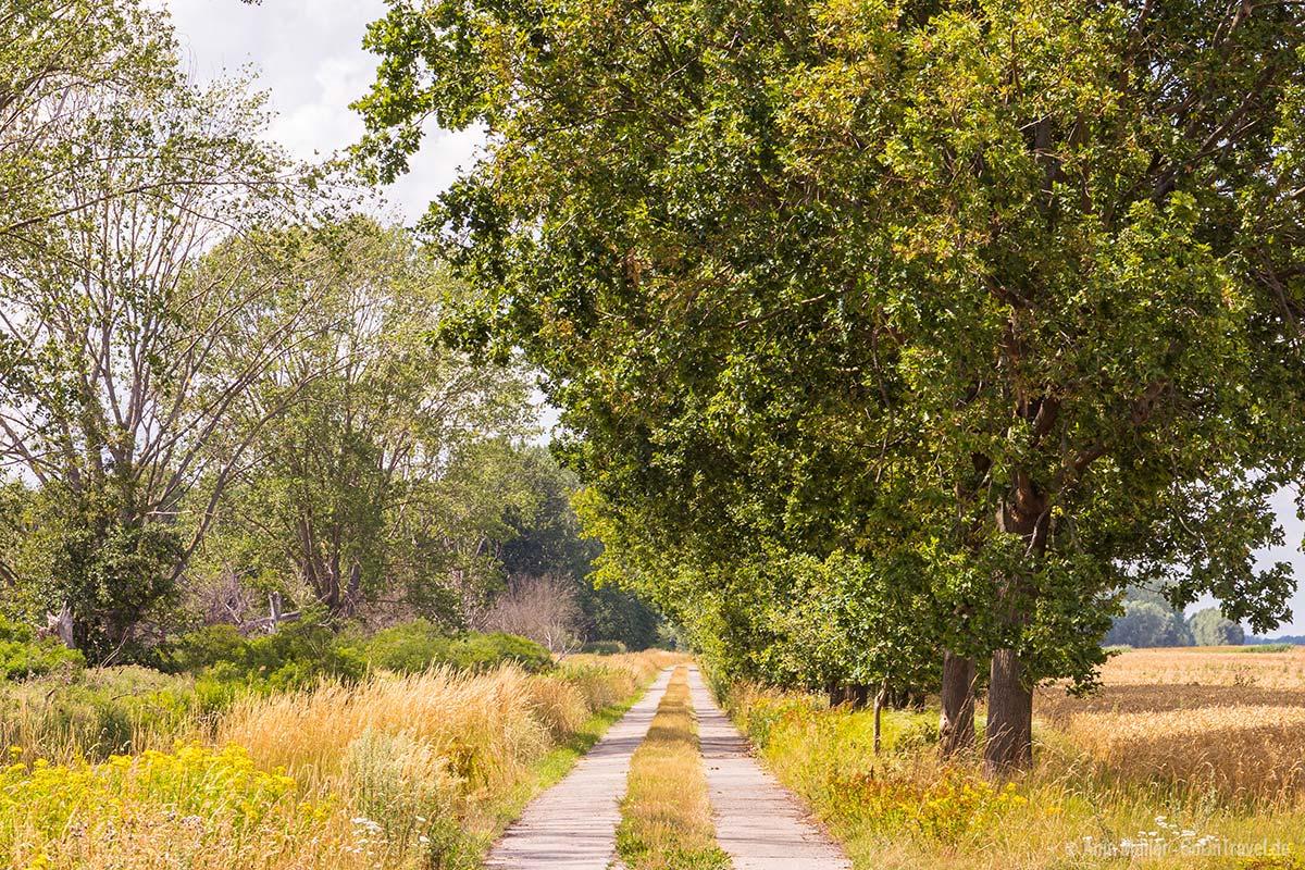 Abseits der Hauptstraßen gibt es viele einsame Wege zu entdecken