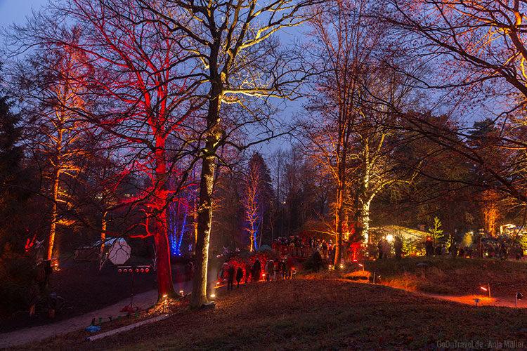 Waldweihnacht im Forstbotanischen Garten