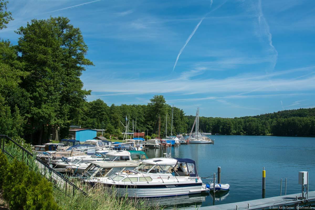 Sommer am Werbellinsee