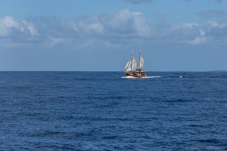 Ein Ausflugsschiff vor der Küste von Teneriffa