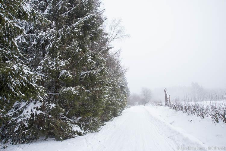 einsame Loipe in den Ardennen