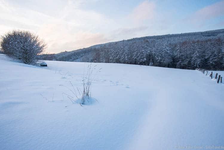 winterliche Abendstimmung in Neuville