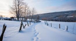 Winter in den Ardennen: meine Tipps zu Ausflüge, Wetter und Unterkünfte