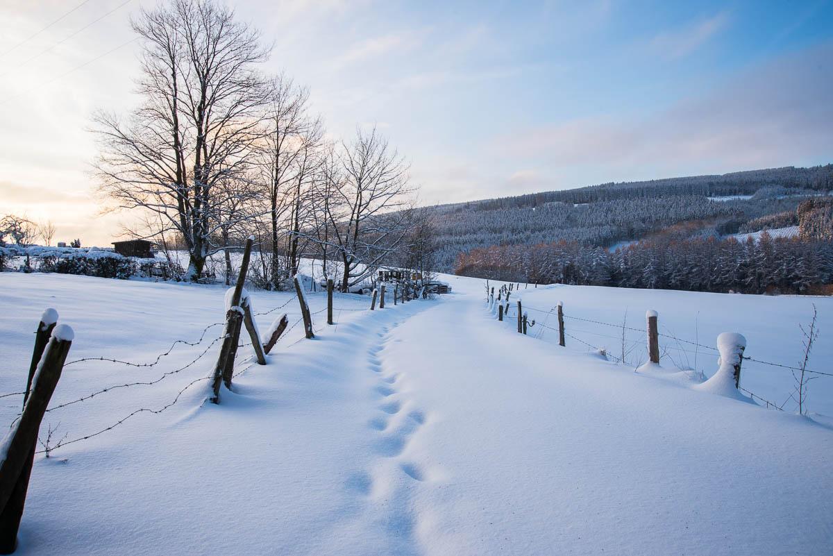 Winter Reiseziele 2020: Ardennen in Belgien
