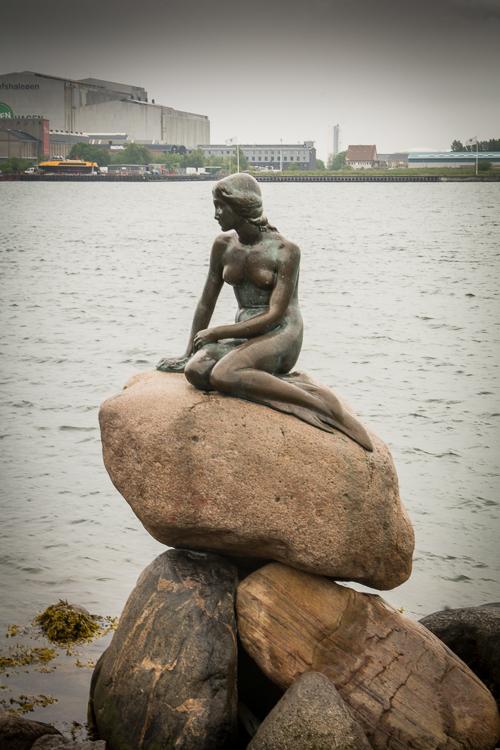 die kleine Meerjungfrau, das Wahrzeichen von Kopenhagen